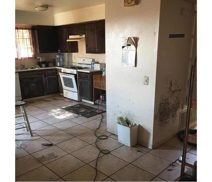 Photo of Kitchen with visible mold on walls