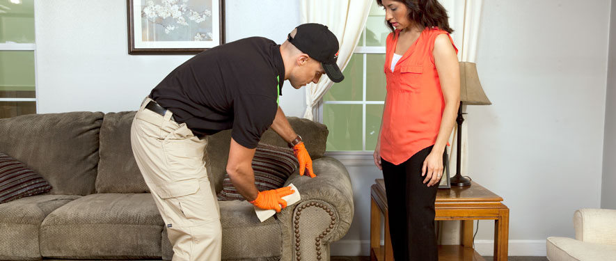 Garden Grove, CA carpet upholstery cleaning